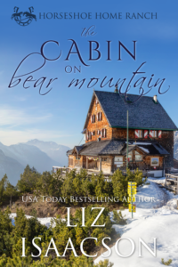 The Cabin on Bear Mountain FINAL COVER